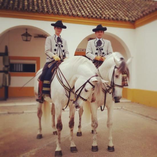 Nastasia manan ecole royale andalouse aux ecuries de loudjil