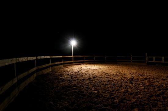 Rond de longe ecuries de loudjil nuit